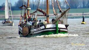 <b>Schmack GESINE von PAPENBURG DCLD MMSI 211279790 Emden Segelschiff</b>