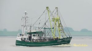 JAN - POG1 -  shrimp trawler ...