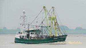 <b>JAN - POG1 -  shrimp trawler - Kutter Emden - Dollart - Unterems</b>