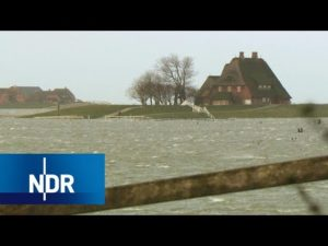 <b>Land unter auf Hallig Hooge | die nordstory | NDR</b>